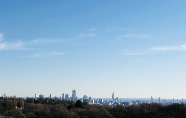 Sahar-Hampstead-Heath.jpg